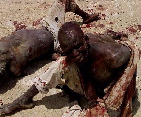 Hotunan nasarar da rundunar Sojan Najeriya take samu akan mayakan Boko Haram