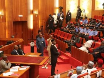 Acting-IG-Adamu-at-the-senate-2-653x365.jpeg